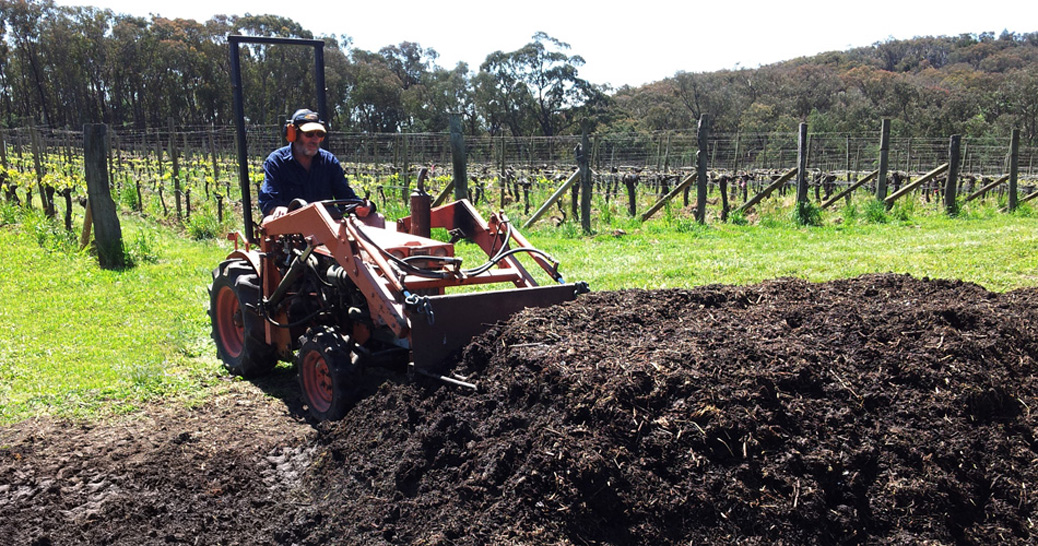 sorrenberg-vineyard-barry-morey-biodynamic